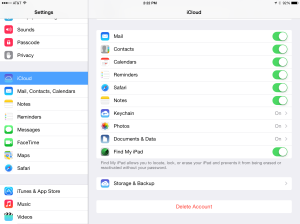 Enable Find My iPad in Settings